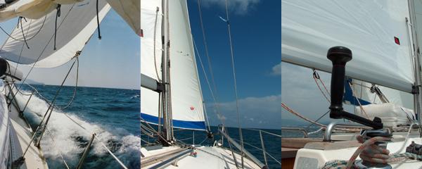Scuola Vela Mediterranea Sailing
